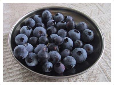 09182003_blueberries.jpg